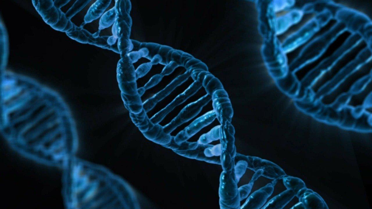 Beneficios de la evolución celular