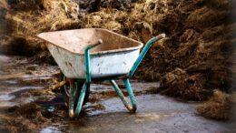 Cuál es el impacto ambiental de los fertilizantes