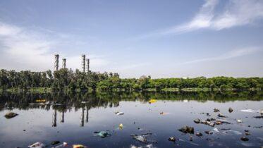 Cuál es el procedimiento para purificar el agua residual