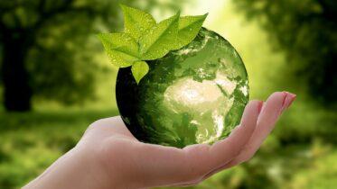 Cuál es la relación entre medio ambiente y salud