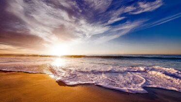Qué es acidificación en los océanos