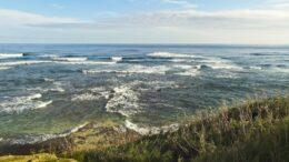 Qué es la circulación oceánica